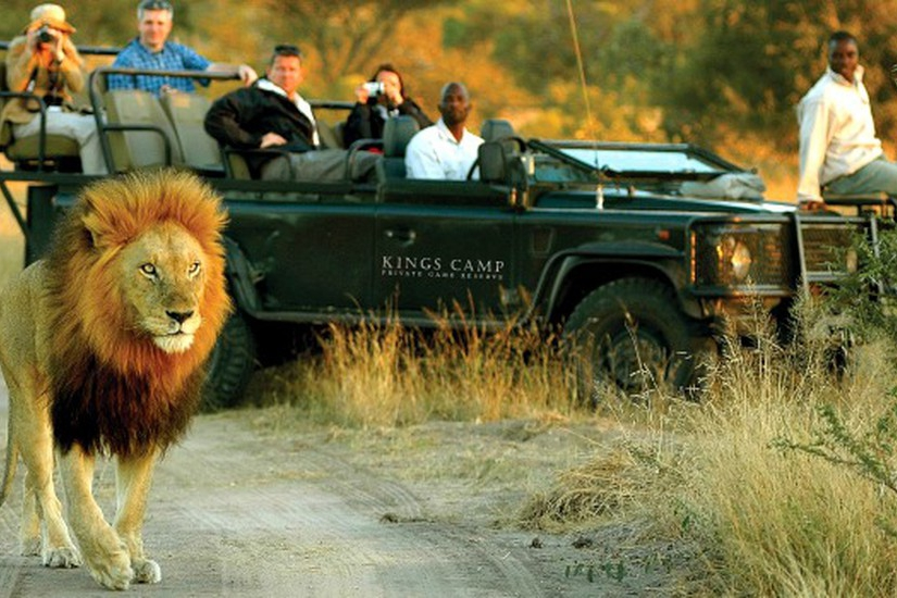 Kruger National Park 3 Days 2 Nights Magical Safari