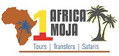Africa Moja Tours Best Tours & Safaris in South Africa
