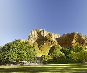 Private Cape Winelands Day Tour